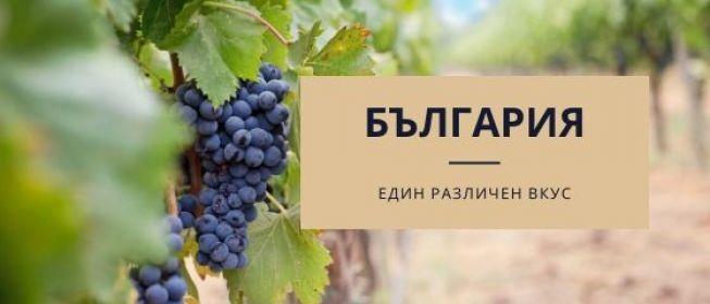 Опознавателен винен и културен тур:  Долините на Струма и Места, Родопите и Тракия