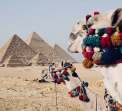 Ваканция в ЕГИПЕТ - ХУРГАДА, КАЙРО И КРУИЗ ПО РЕКА НИЛ - с вътрешен полет