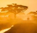 Кения - От двете страни на екватора