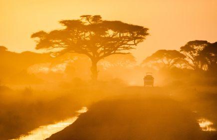 Сафари в Кения - От двете страни на екватора