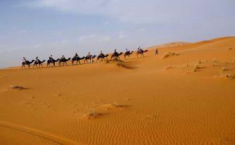 Екскурзия в ТУНИС - обиколна програма - Специална ваканционна програма за туристи над 55 години и приятели