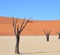 Намибия - Зимбабве - Пустиня, океан и грохот на водопад