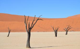 Екскурзия Намибия - Зимбабве - Пустиня, океан и грохот на водопад