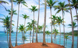 Почивки в Шри Ланка - Никона травел